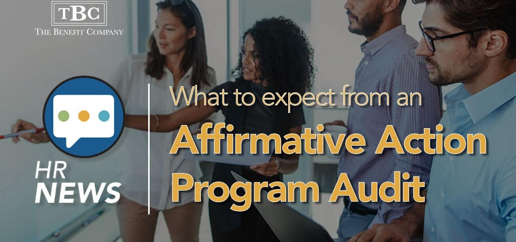Affirmative Action Program Audit